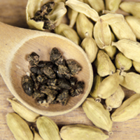The Aromatic Flavours of Cardamom flavour-img
